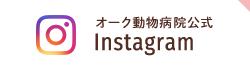instagram btn